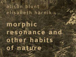 Alison Blunt / Elisabeth Harnik